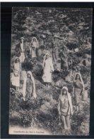 CEYLON Cueillette Du Thé Ca 1905 Old Postcard - Sri Lanka (Ceylon)