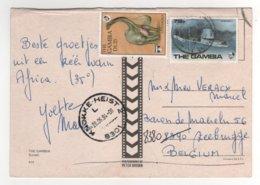 """Beaux Timbres """" Dinosaure , Avion """" Sur Cp , Carte , Postcard Du 28/06/1994 - Gambie (1965-...)"""