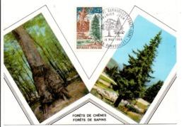 CARTE MAXIMUM 1968 JUMELAGE FORET DE RAMBOUILLET-FORET NOIRE - Cartoline Maximum