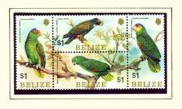 BELIZE  -  1984 Parrots Block Set Unmounted/Never Hinged Mint - Belize (1973-...)