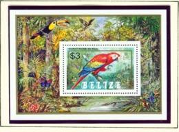 BELIZE  -  1984 Parrots Miniature Sheet Unmounted/Never Hinged Mint - Belize (1973-...)