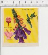 Image Papier Botanique Digitale Fleur IM 14/46 - Vieux Papiers