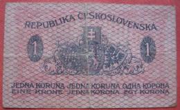 1 Krone / Jedna Koruna / Jednu Korunu 1919 (WPM 6) - Czechoslovakia