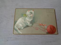 Chat ( 123 )  Kat  -  Carte Gaufrée  Reliëf - Chats