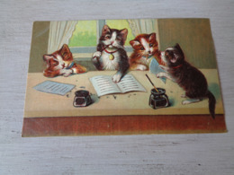 Chat ( 125 )  Kat  -  Carte Gaufrée  Reliëf - Chats