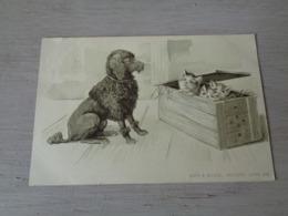 Chat ( 127 )  Kat  -  Carte Gaufrée  Reliëf  -  Chien  Hond - Chats