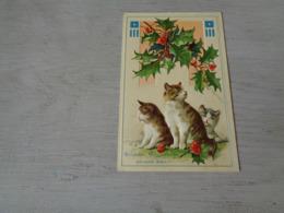 Chat ( 129 )  Kat  -  Carte Gaufrée  Reliëf - Chats