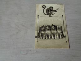 Chat ( 132 )  Kat  -  Carte Gaufrée  Reliëf  -  Singe   Aap - Chats