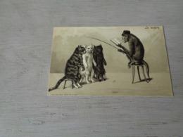 Chat ( 133 )  Kat  -  Carte Gaufrée  Reliëf  -  Chat Personalisé -   Singe Personalisé  Aap - Chats