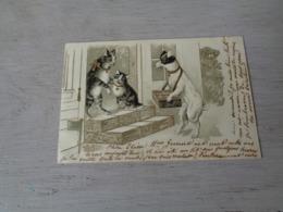 Chat ( 138 )  Kat  -  Carte Gaufrée  Reliëf  -  Chat Personalisé  - Chien  Hond - Chats