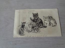 Chat ( 140 )  Kat  -  Carte Gaufrée  Reliëf  -  Chat Personalisé - Chats