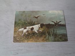 Chien ( 597 )  Hond   Chien De Chasse  Jacht - Chiens