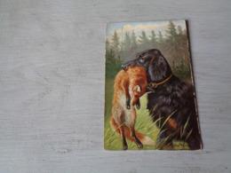 Chien ( 598 )  Hond   Chien De Chasse  Jacht   Vos  Renard - Chiens
