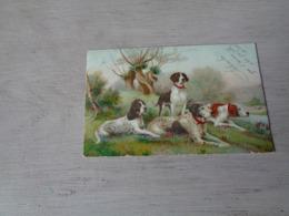 Chien ( 600 )  Hond   Chien De Chasse  Jacht - Chiens