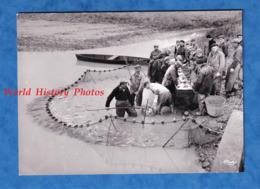 Photo Ancienne - étang De LA DOMBES - Jour De Pêche - 1968 - Pécheur Au Filet - Villars Les Dombes Ain Lapeyrouse - Métiers