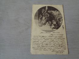 Carte ( 353 ) Fantaisie  Fantasie - Thème Animal  Dier  :   Paard   Cheval - Chevaux