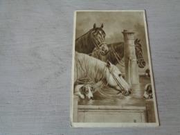 Carte ( 358 ) Fantaisie  Fantasie - Thème Animal  Dier  :   Paard   Cheval - Illustrateur C. Reichert  - Chien  Hond - Chevaux