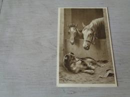 Carte ( 359 ) Fantaisie  Fantasie - Thème Animal  Dier  :   Paard   Cheval - Illustrateur C. Reichert  - Chien  Hond - Chevaux