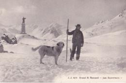 Grand St-Bernard Les Sauveteurs - VS Valais