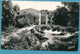 BOUSSAY - Le Moulin De Rousselin Sur La Sèvre -  Photo Véritable Circulé 1958 - Boussay