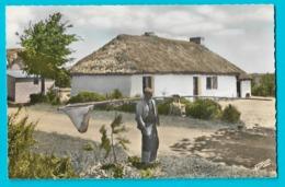 Vendée Une Bourine Et Un Pêcheur De Grenouilles - Non Classés