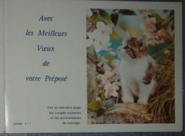 Petit Calendrier De Poche 1986 La Poste PTT Meilleurs Voeux Facteur  Chat Chaton Lavigne - Calendars