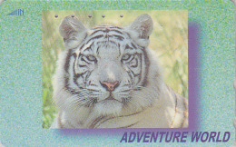 Télécarte Japon / 110-016 - ANIMAL - TIGRE BLANC - WHITE TIGER Feline Japan Phonecard Telefonkarte - 415 - Selva