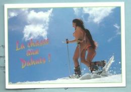 CPM   Ski Soleil Deux Jolies Pin Up à Ski - Humour La Chasse Aux Dahuts - Pin-Ups
