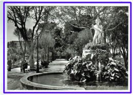 23586  CPM  CALTANISSETTA :  Giardini Pubblico - Puttino   !!   Superbe  Carte Photo !! - Caltanissetta