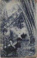 Timor Português - Trecho De Um Bambual - Big Oblique Fold Bottom - Oost-Timor