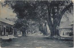 Timor Português - Uma Rua De Dili - East Timor