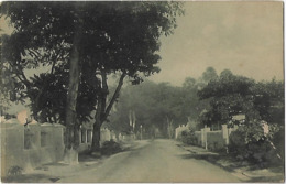 Timor Português - Uma Rua De Dili - Cut At Left - East Timor