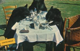 Afternoon Refreshments Are Enjoyed At A Canadian Rockies Resort, With Much Gusto And Noise, Bt Three Self-invited Bears. - Humour