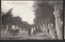 Damas  Promenade Raloué  Editeur  Angelil ( Beyrouth Et Damas ) - Syria