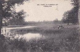 209 RAMBOUILLET                                   L'etang D'or - Rambouillet