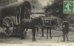 MORCENX (Landes) Bross Landais RV - Morcenx