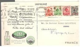23428 - Publicitaire IONYL - Libanon
