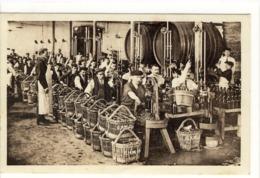 Carte Postale Ancienne Champagne - Vendanges Et Travail Du Vin - Viñedos