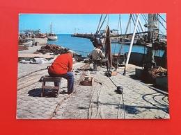 Cartolina Cattolica - Il Porto - 1973 - Rimini