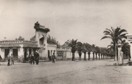 CPA ALGERIE - Jemmapes - Rue Pricipale Pompe à Essence - Autres Villes