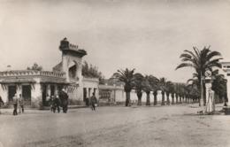 CPA ALGERIE - Jemmapes - Rue Pricipale Pompe à Essence - Altre Città