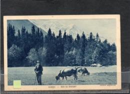 CHAMONIX // Lot Ch 403 - Chamonix-Mont-Blanc