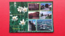 OBCINA VERZEJ.BUNCANI,BANOVCI.NARCISE - Slovenië