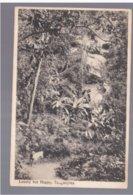 TANZANIA Tanganyika  - Lonely But Happy Ca 1920 Old Postcard - Tanzania