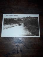 Cartolina Postale, Postcard 1930, Cortona, Panorama - Arezzo