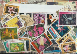 Motives Stamps-200 Different Orchids Stamps - Orchids