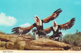 Amérique Etats-Unis > NM - New Mexico  GALLUP Eagle Dancers At Gallup Intertribal Ceremonials (dance Aigle) *PRIX FIXE - Autres