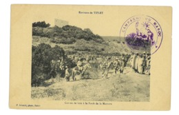CPA MAROC TIFLET CORVEE DE BOIS A LA FORET DE LA MAMORA - Maroc