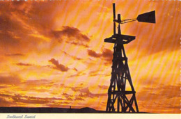 Amérique Etats-Unis > NM New Mexico SOUTHWEST SUNSET Windmills (Moulin à Vent) SOUTHWEST Post Card Albuquerque*PRIX FIXE - Albuquerque