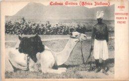 AFRIQUE - ERYTHREE  - Colonia Gritrea - Erythrée
